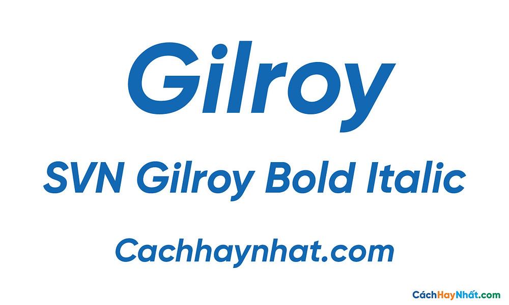 SVN Gilroy Bold Italic