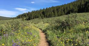 Colorado Trail - Day 12