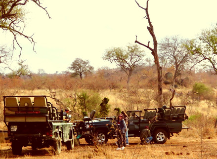 Travelling Around Africa Should Be On All Of Your Lists... Reason 1: The African Bush