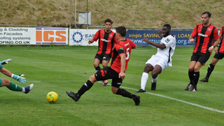 Opening day win for Robins