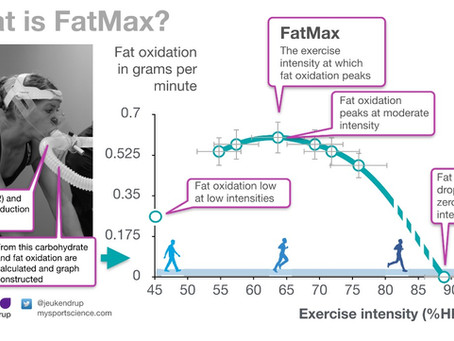 What is Fatmax?