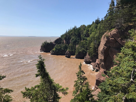 Best accommodations for travelling Canada in bay of Fundy New Brunswick. Hostels, Camping and more!