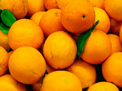 Finska carina blokirala 100 tona izraelskih narandži zagađenih pesticidima