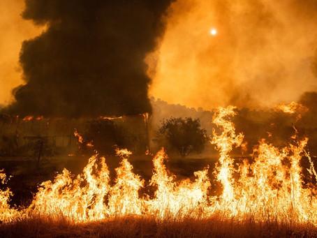 Apple fará doação para apoiar esforços locais de combate a incêndios florestais na Califórnia