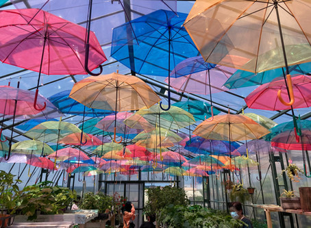Botanicalshop&FarmersCafe Ca-Ga