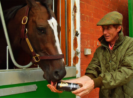 """Horse Racing Doc """"Chasing The Win"""" Tells a Heart-Warming Story You Need to Know"""