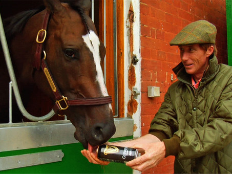 "Horse Racing Doc ""Chasing The Win"" Tells a Heart-Warming Story You Need to Know"
