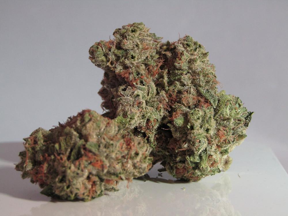 buds of marijuana