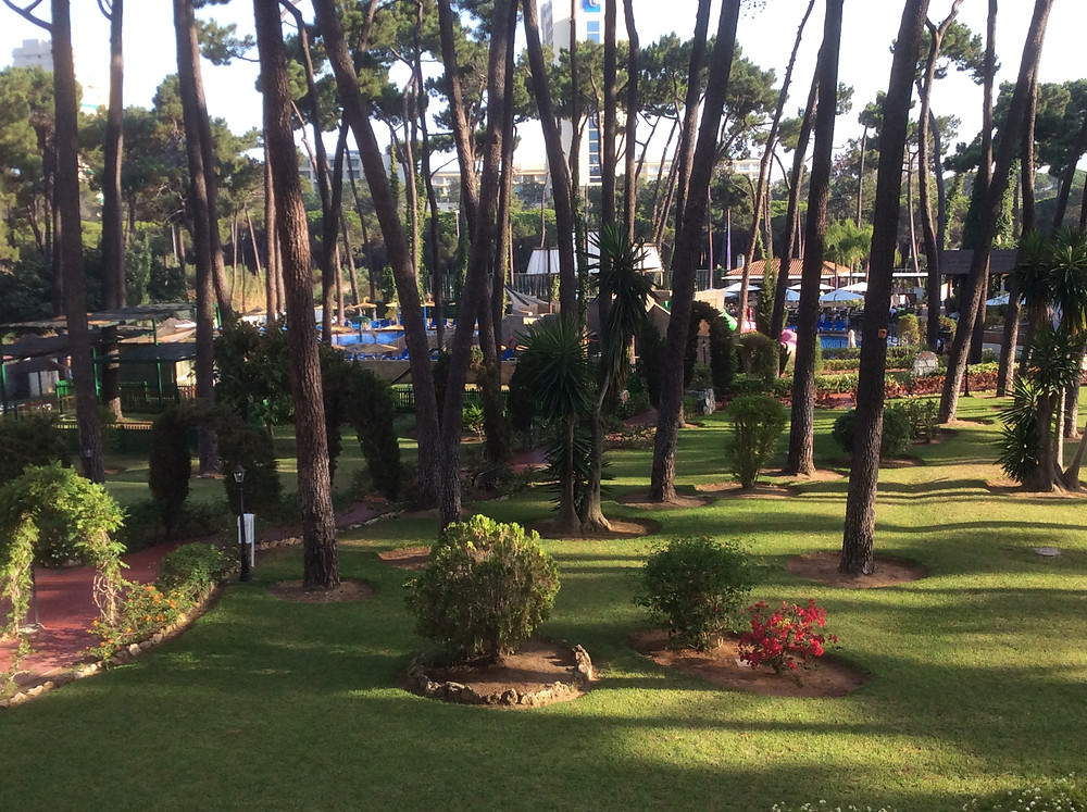 Hotel Roc Marbella gardens