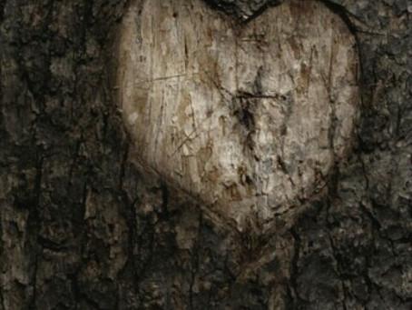 Putrefato Coração