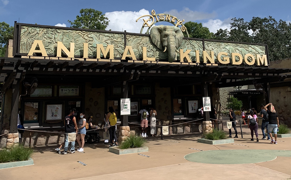 Hours Extended Again for the Holiday Weekend at Magic Kingdom & Animal Kingdom