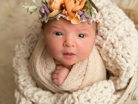 Sage|Newborn session