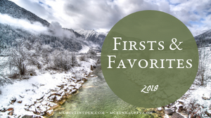 Firsts and Favorites of 2018_MK McClintock and McKenna Grey