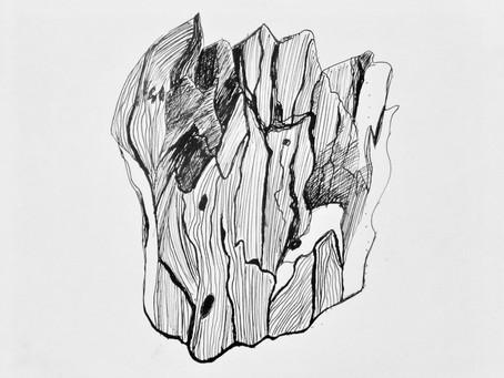 Plume + encre de chine( mes élèves sont formidables)
