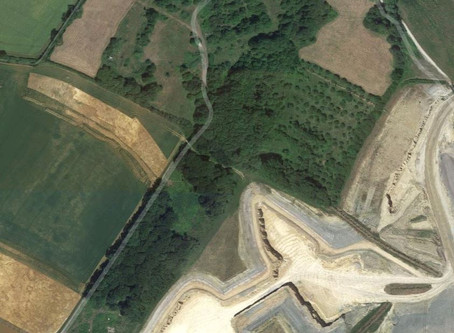 Abandoned Orchards