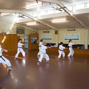 Milford Dojo Training photos