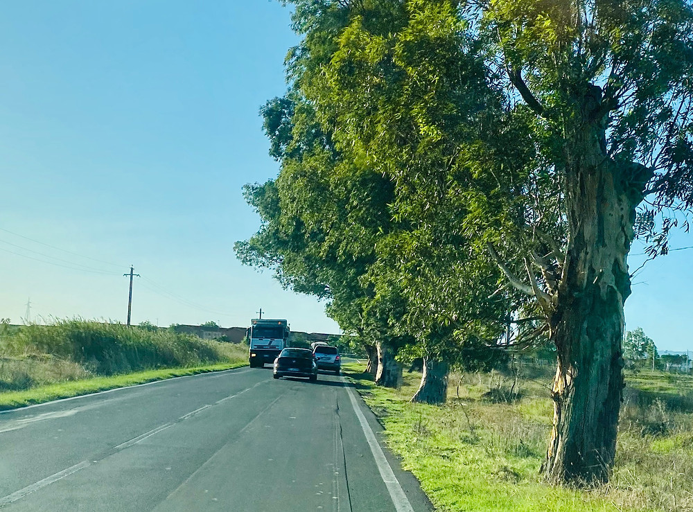 sicily-driving-passing-dangerous