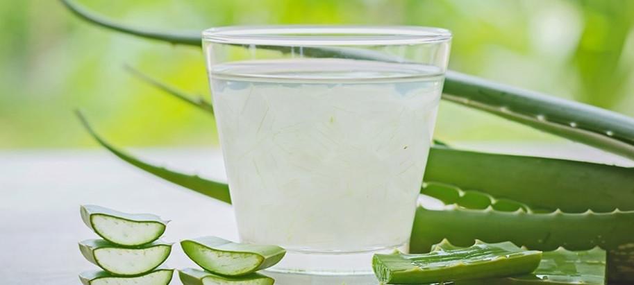 L'aloe vera - Remède naturel de légende