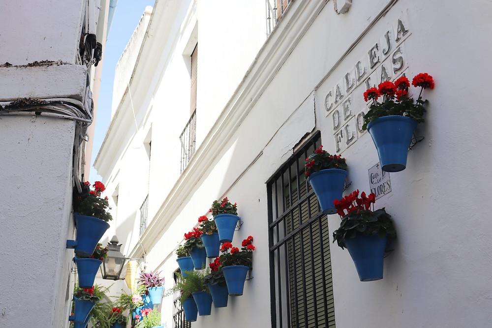 Calleja de las Flores in Cordoba Spain