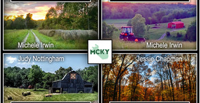 """The """"MCKY Photo Contest"""" Results"""