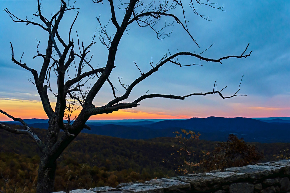 Barren tree branches, stone wall with sunset and mountains in the background