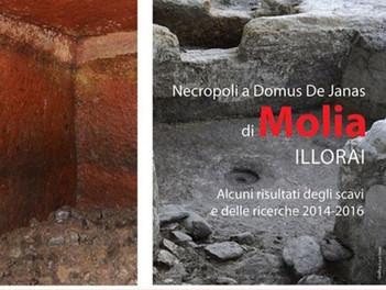 Necropoli a Domus De Janas di Molia (Illorai)
