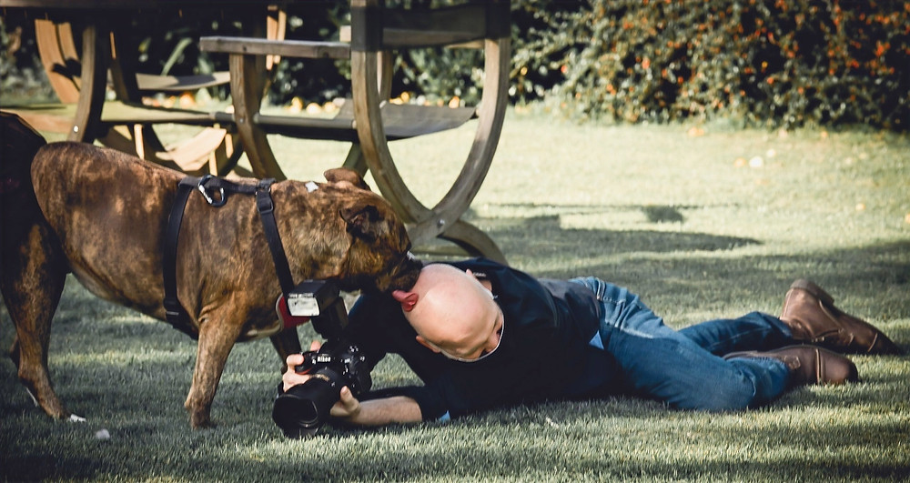 Photographer Gets Hit on by Dog