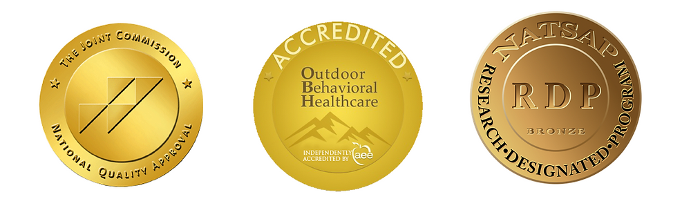 Joint Commision Accredited, Outdoor Behavioral Healthcare Accredited, NATSAP Research Designated Program