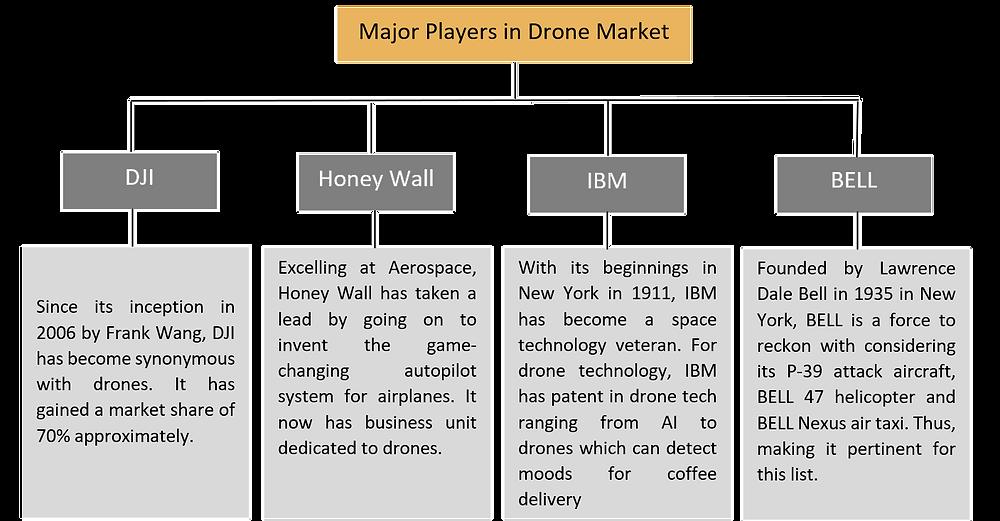 Major Players in Drone Market, Drones
