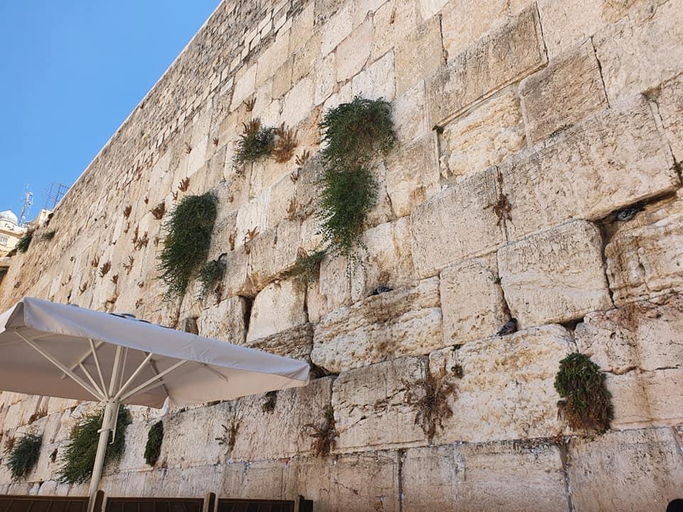 Judaísmo - Kotel HaMaaravi (Muro das Lamentações)