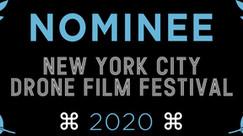 NYCDFF 2020