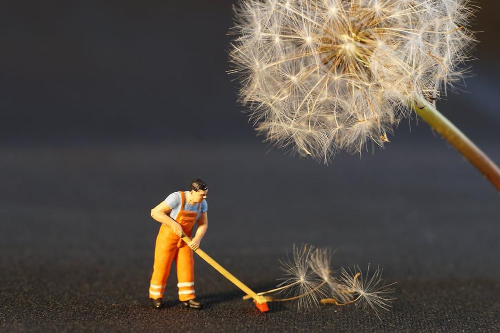 trabajo, sueños, limpieza, superación, sé el jefe, hectorrc.com