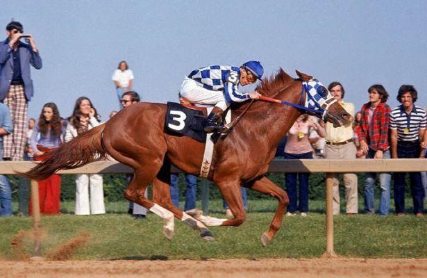 Secretariat running a race