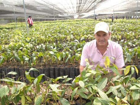 El Cesar inauguró el vivero de cacao más grande de Colombia