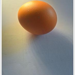 Lockdown Challenge 2 - Egg