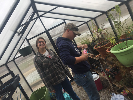 F2S: MVHS Greenhouse Project Vertical & Project Hypothesis Testing!
