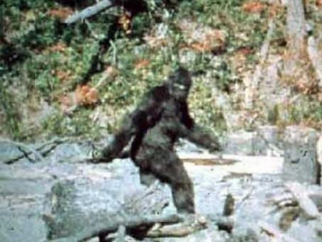 How the Bigfoot Legend Began