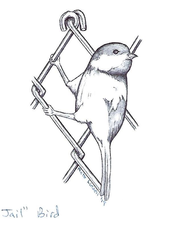 Art Contest, bird