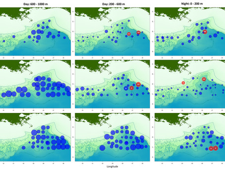 NEW PAPER: Myctophid Diversity in the Gulf of Mexico