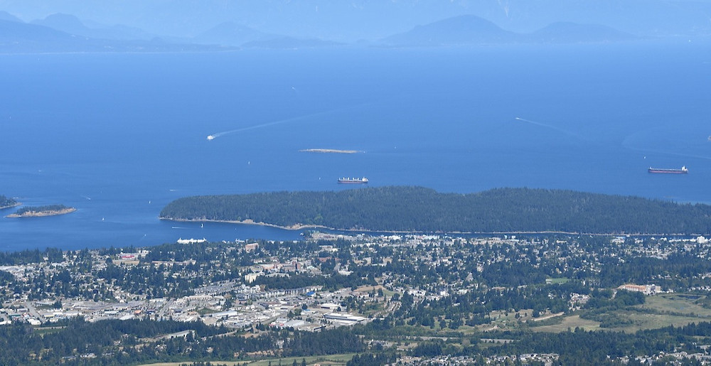 从山顶俯瞰纳奈莫市区,图片来源:岛报