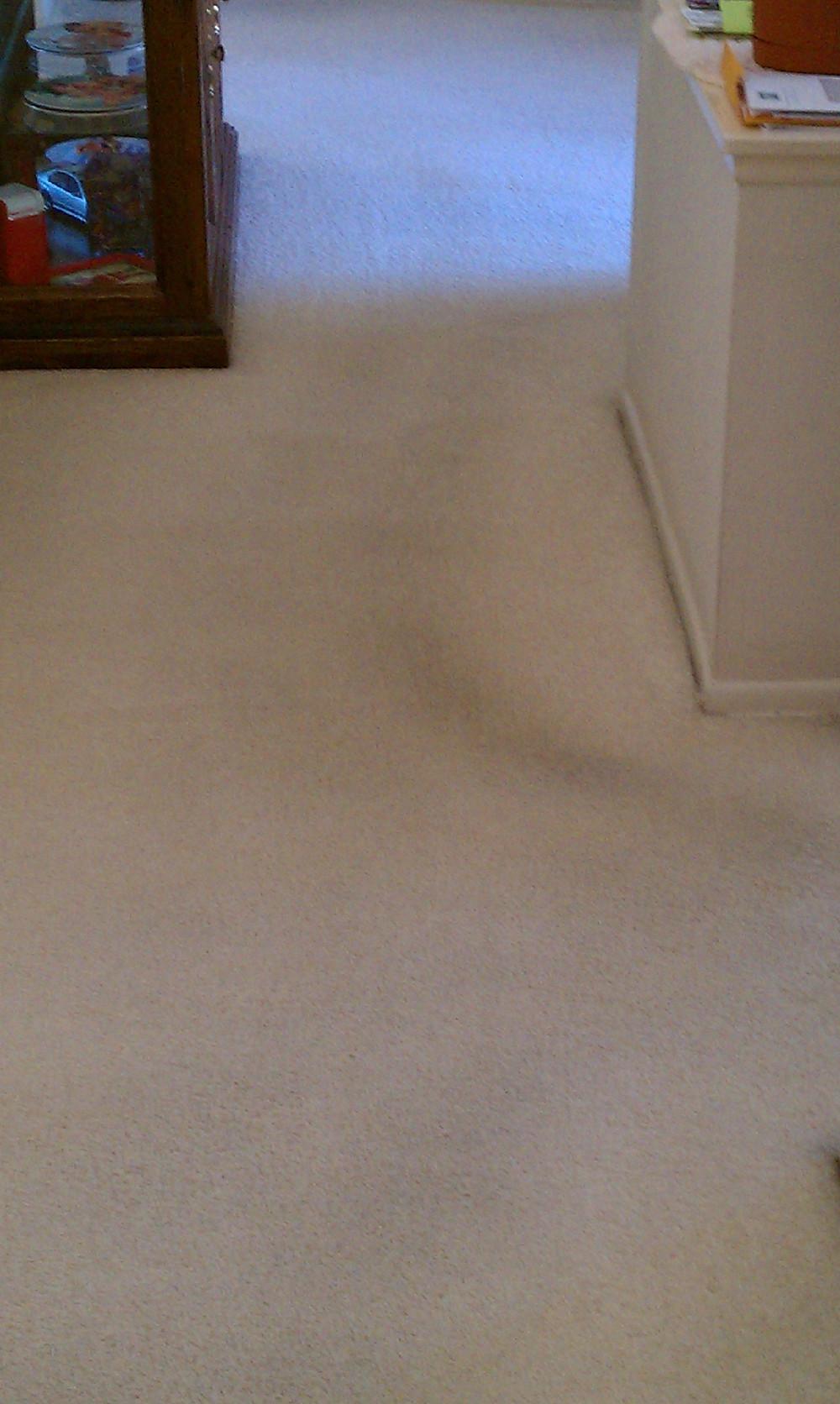 best carpet to prevent traffic patterns