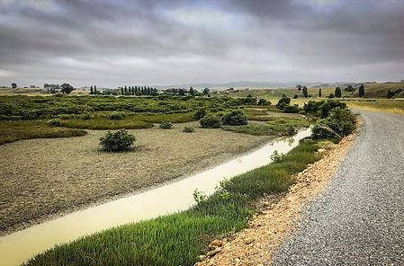 Cycle Trail Pipiroa.jpg