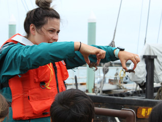 What parents are saying about Marine Science Camp staff
