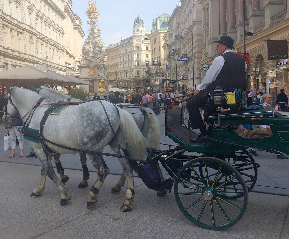 Horse and carriage in main square of Vienna Austria