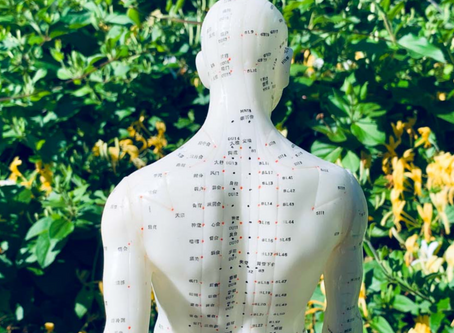 Acupuncture Geelong | Acupuncture And Herbs For Lung Infections
