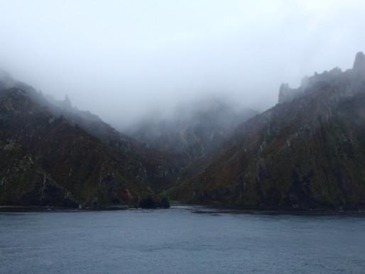 Gough Team 63 - Settling into island life