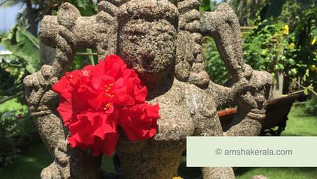 HAPPY GURU PURNIMA : célébration du Guru