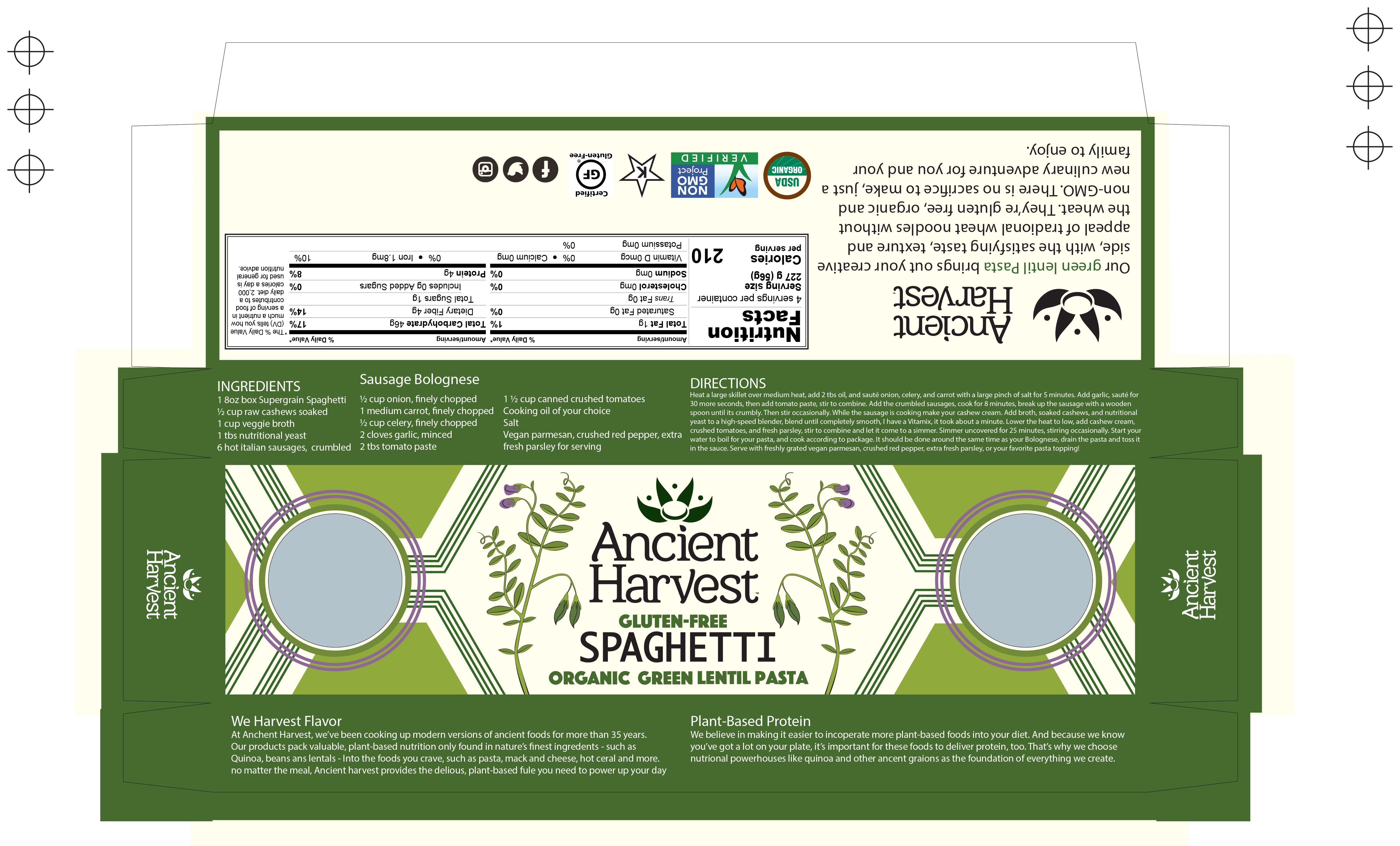 spaghetti 3.1