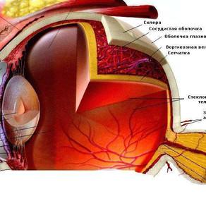 Болит глаз. Причины