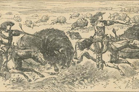 My First Buffalo Hunt With Indians